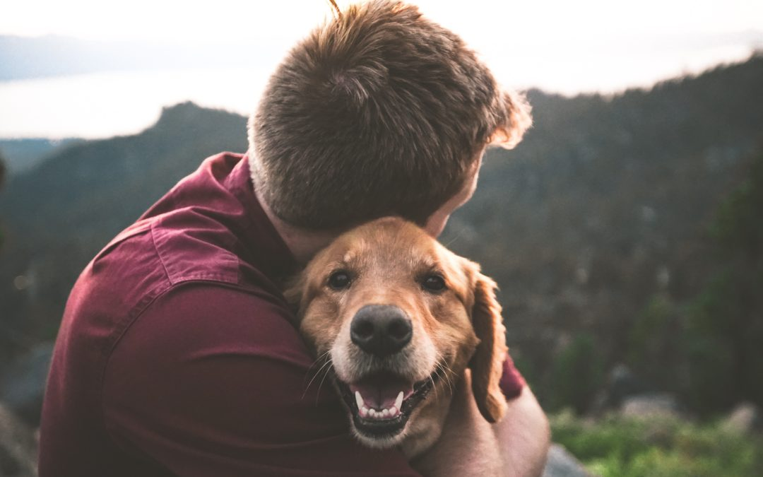 friendly local vet - Dog being held to chest by man
